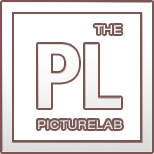 The Picture Lab